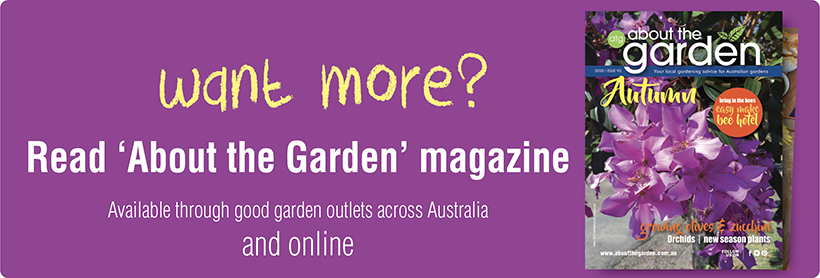 About the Garden Magazine - Great gardening ideas and new plants to plant