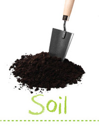 Searles Garden - Garden Soil Care