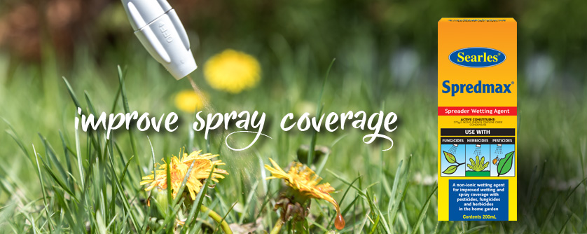 How to kill lawn and garden weeds better with a wetting agent