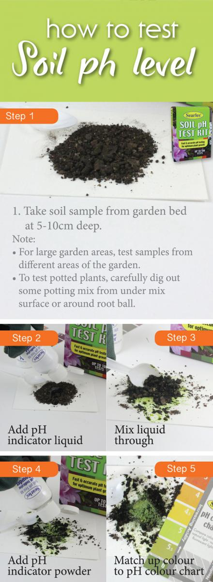 How to test the soil pH level in garden soil - Soil pH test kit