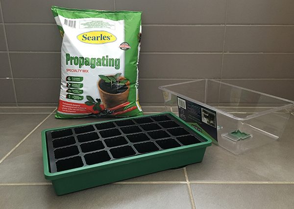 Propagating mix and propagating tray