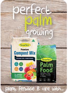 Searles Garden Products - Soil mix fertiliser plant food for growing tree palm