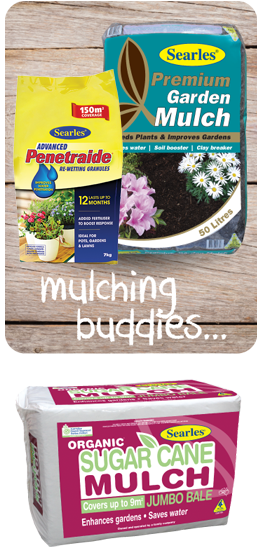 best mulching products for Australian gardens
