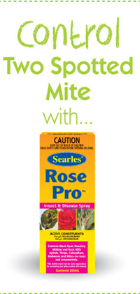 Searles Gardening Problem Solver Controlling Two spotted Mite