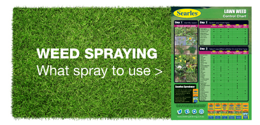 Searles Weed spraying lawn chart - What spray to use for lawn weeds
