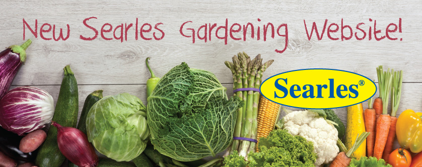 Welcome to new Searles Gardening Website blog post