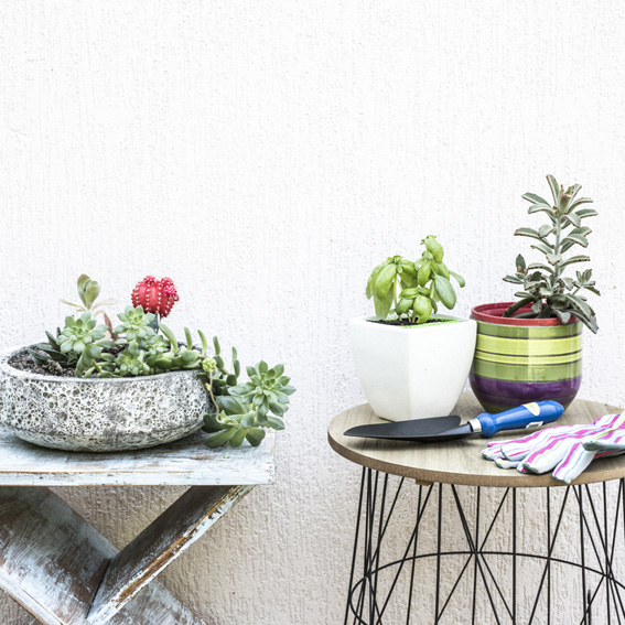Place pot plants on table or shelving to prevent bending - prevent gardening injuries