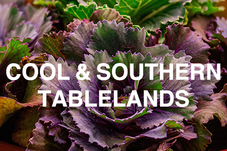 Grow Now - Cool & Southern Tablelands region