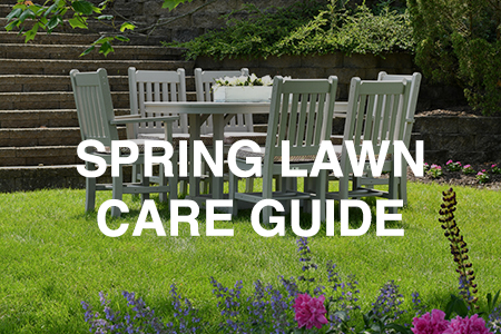 Problem Solver - Spring Lawn Care Guide