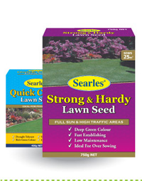 Lawn Seeds