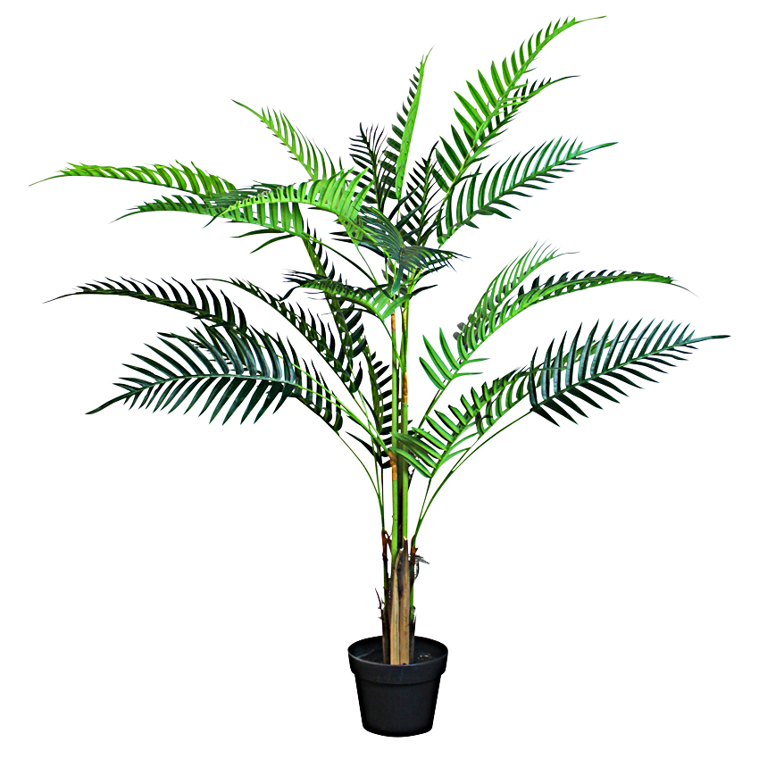 Acrea Palm with Pot 120cm