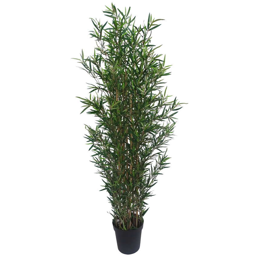 Bamboo Tree with Pot 180cm