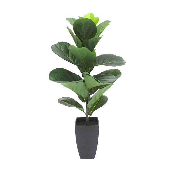 Fiddle Leaf Fig w Pot 90cmH