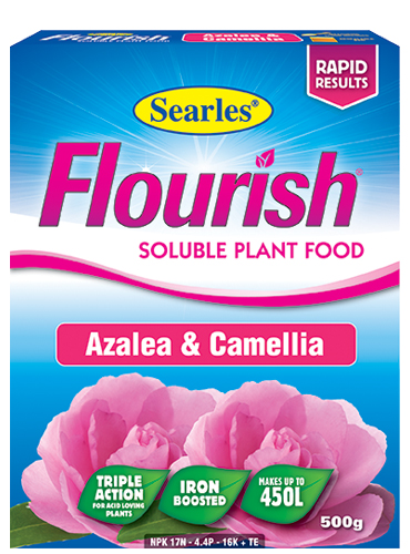 Searles Flourish Azalea, Camellia Soluble Plant Food